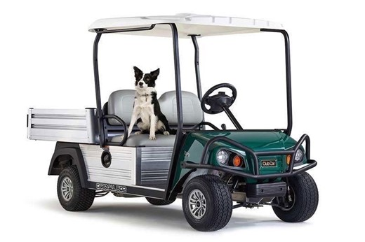 CLUB CAR CARRYALL 502